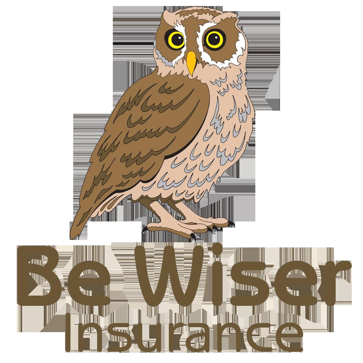 logo be wiser
